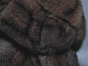 HOW TO CARE FOR YOUR SABLE FUR